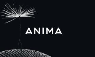 What to expect from Swedish start-up Anima?
