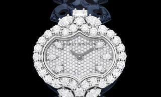 Introducing the Divine Time by Harry Winston