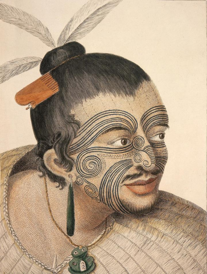 Drawing of a Maori chief, 1784, by Parkinson following Captain James Cook's first voyage to New Zealand